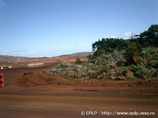Biodiversite007.jpg