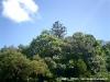 Biodiversite009.jpg