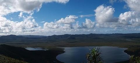 Découverte des zones humides à la Plaine des Lacs avec la Province Sud
