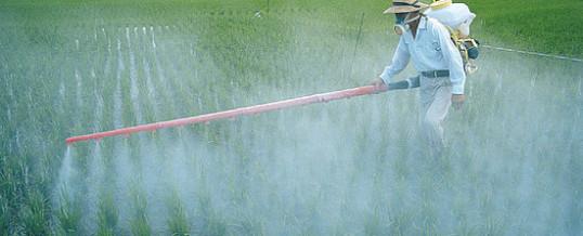 Règlementation des produits phytosanitaires à usage agricole : avis très défavorable des associations !