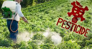 Loi de Pays pesticides et signes de qualité agricole
