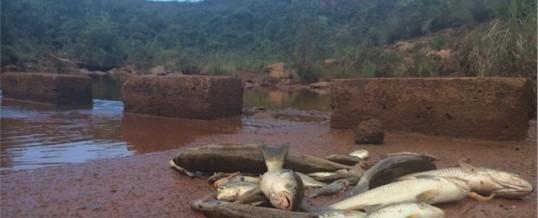 Jugement affaire deuxième fuite d'acide des 6 et 7 mai 2014 chez Vale Nouvelle-Calédonie