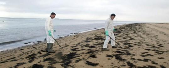 Protection des «nettoyeurs» des plages des Iles Loyauté