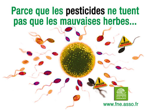 Pesticides et santé : les sénateurs ont bien du mal à percer le brouillard